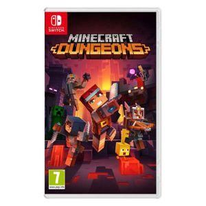 Minecraft Dungeons NSW