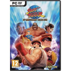 Street Fighter (30th Anniversary Collection) PC